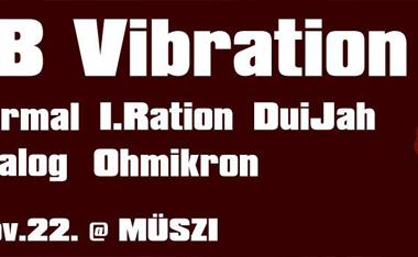 11.23. DUB Vibration # 2